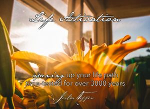 Life Activation - Julia Tiffin