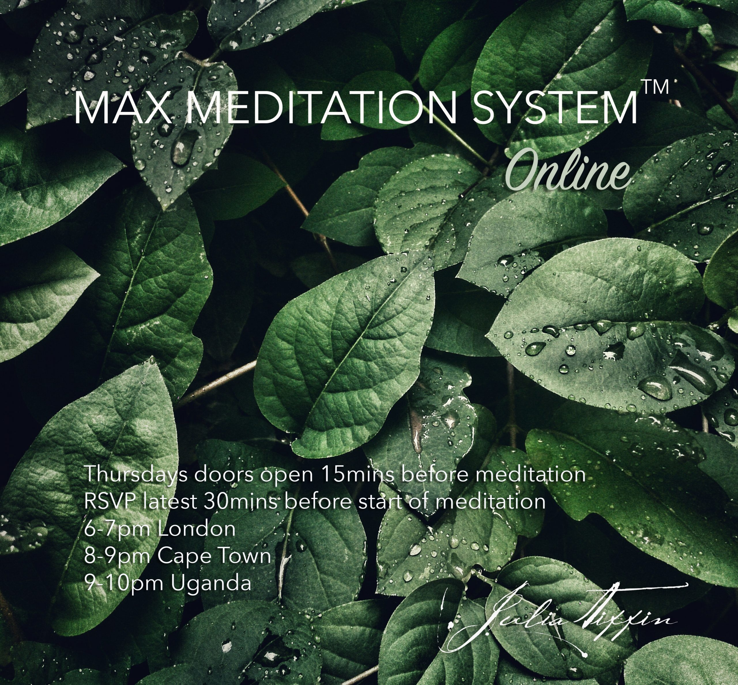 Max Meditation System™ @ Zoom online. RSVP for link latest 30mins before start of meditation. Doors open 15mins before meditation.